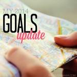 My 2014 Goals Update