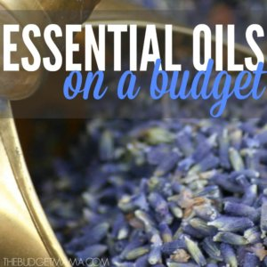 Essential Oils on a Budget SQ