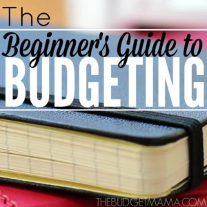 The Beginner's Guide to Budgeting SQ