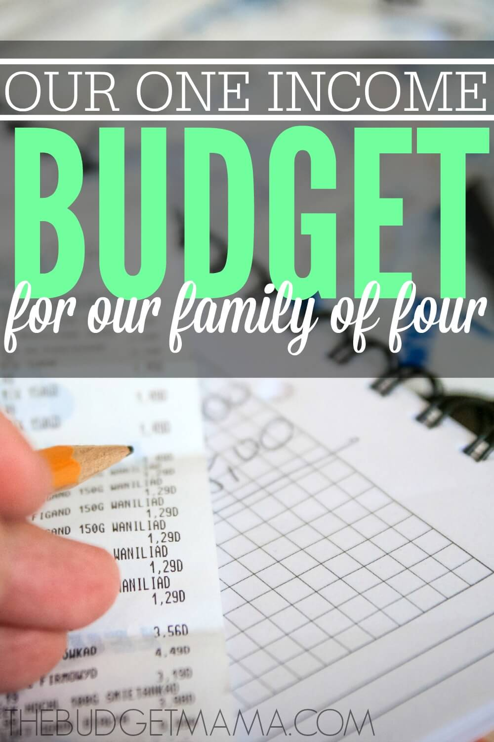 our 2015 one income family budget