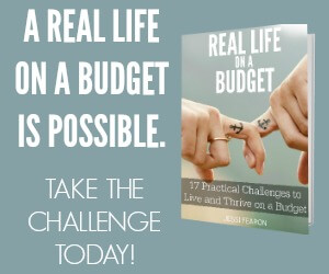 A Real Life on a Budget is Possible 300x250 Banner