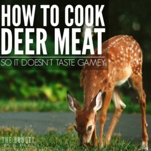 easy for me to learn how to do. Since deer meat saves us so much on our grocery bill I had to figure it out and these are just a few of the ways that I use to help make deer meat taste a little better.