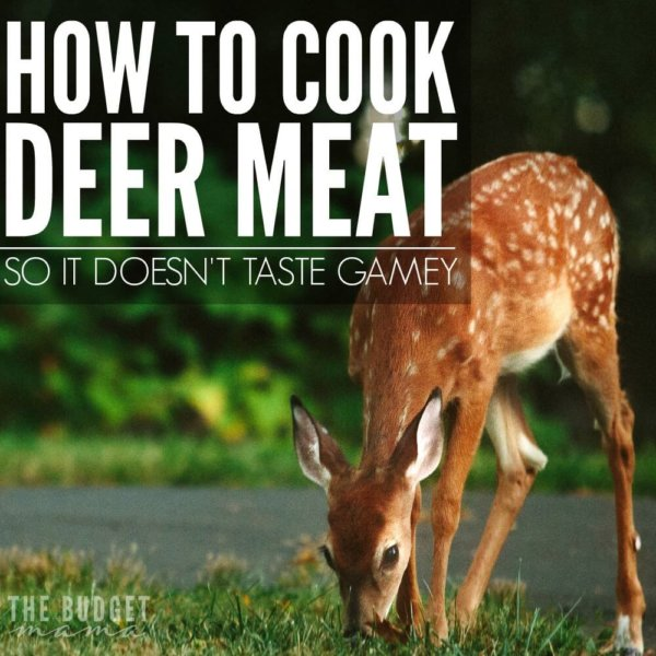 How to Cook Deer Meat So It Doesn't Taste Gamey