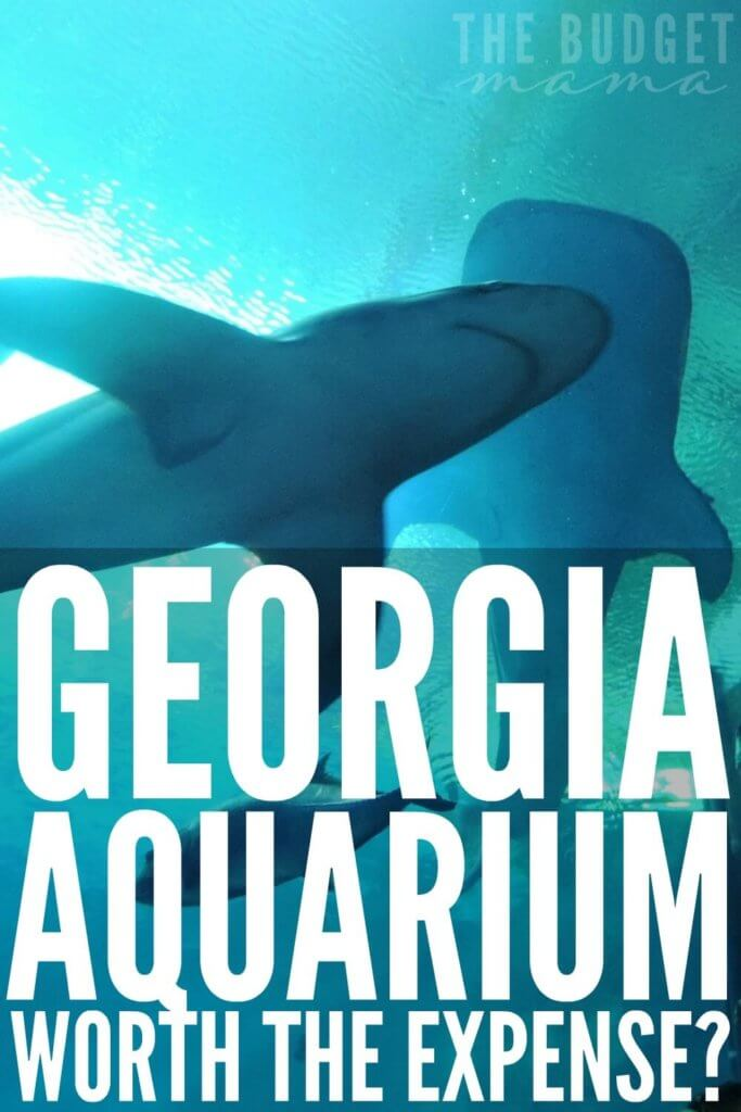 Is the Georgia Aquarium worth the expense? YES! Okay, so how do you afford to pay for a visit in cash? This is our experience and how we paid in cash for it.