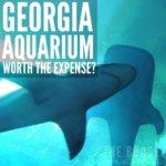 Is the Georgia Aquarium Worth the Expense?