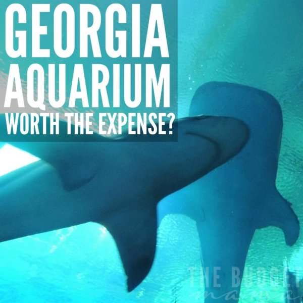 Is the Georgia Aquarium Worth the Expense?