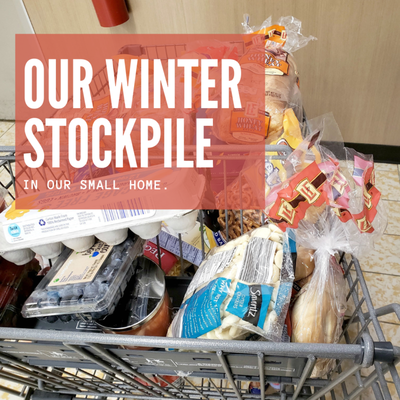 How we're building our winter stockpile on a budget! This way we won't be caught off guard should another wave of panic hit. This is how we've been able to build up on our stockpile on a budget while living in an older smaller home.